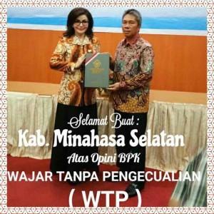 Minsel WTP