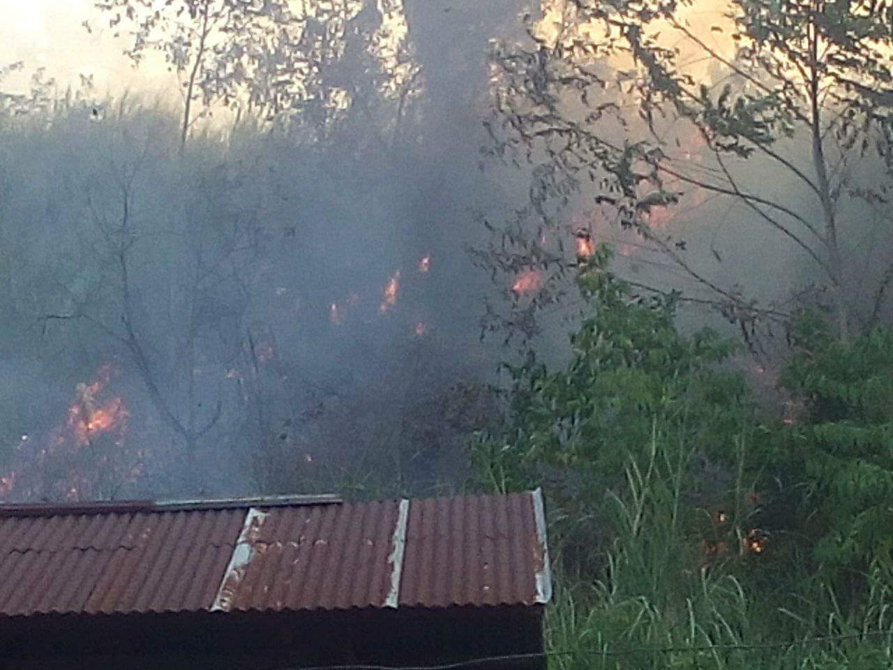 Kebakaran Lahan di Gunung Sasayaban Amurang Ancam Pemukiman Warga