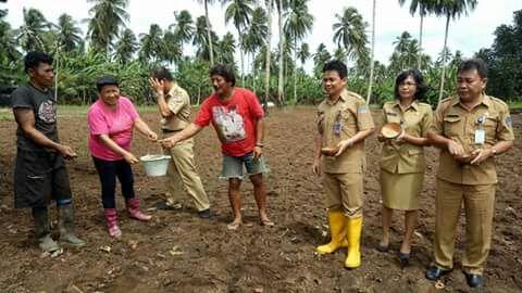 Dinas PKP Dorong Kelompok Tani Maksimalkan Tanam Padi Ladang