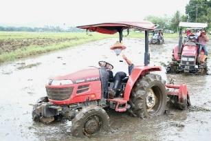 Kendarai Traktor Sawah, Olly Dondokambey Panen Padi dan Cabai