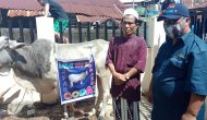 Permalink ke Tim GODAS for JPAR kembali salurkan hewan Qurban di Kecamatan Wenang dan Singkil