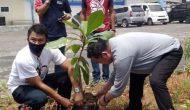 Permalink ke Setahun beroperasinya Pasar Restorasi, PD Pasar Manado tanam pohon Ketapang
