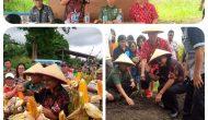 Permalink ke Wawali Bitung – Dandim 1310 Panen Raya Jagung di Matuari