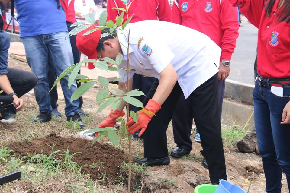 Permalink ke Ikut Tanam Pohon di Manado Bypass, Walikota GSVL Ajak Jaga Kelestarian Alam