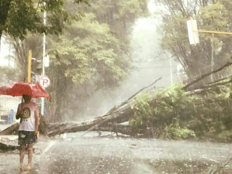 Permalink ke Angin Kencang dan Hujan Deras Landa Kota Manado Hari Ini