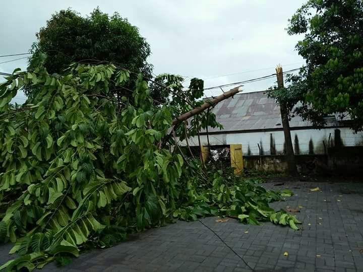Permalink ke Cuaca Extrim, Puluhan Rumah di Minsel Rusak Parah