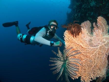 Amazing… SiladenResort Diving Terbaik Dunia