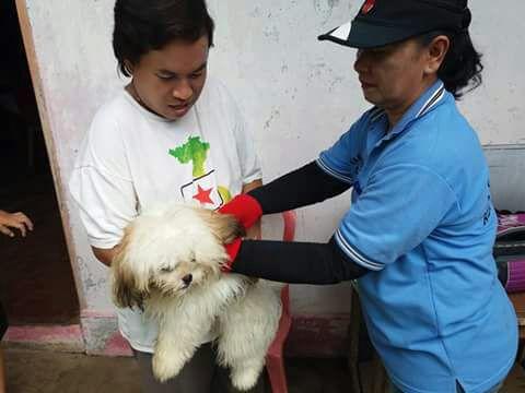 Permalink ke DPKP Temukan 40 Kasus Rabies Di Tahun 2017