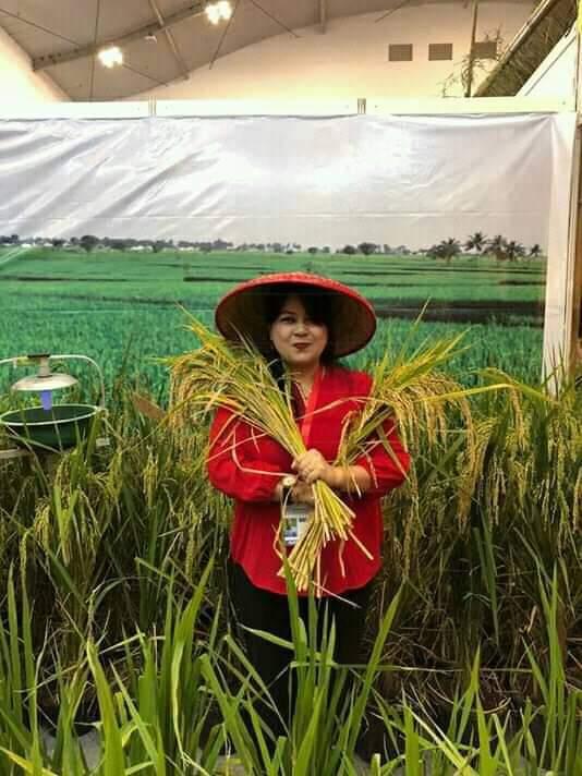 Permalink ke Maju DPD RI, Pricylia Sianipar Rondo Siap Perjuangkan Pengusaha Menengah di Sulut