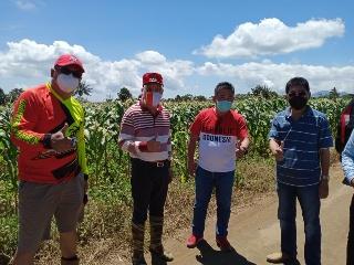 Permalink ke Pantau Jalanya Roda Pertanian, ROR Ajak Masyarakat Bertani