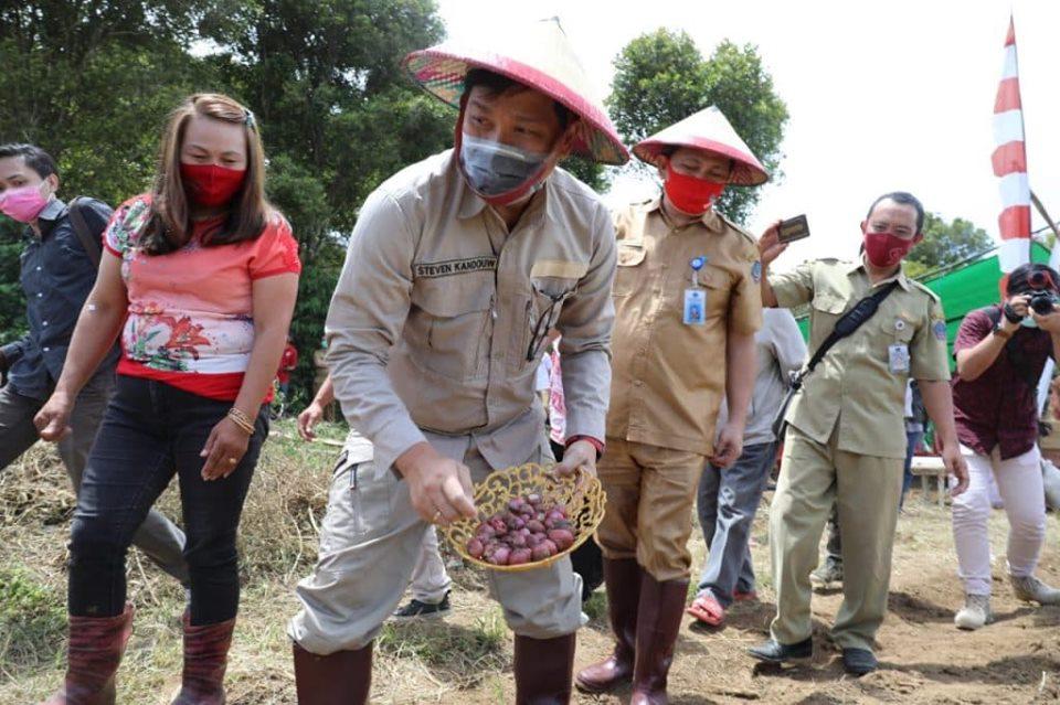 Permalink ke Di Bolmong, Steven Kandouw Jadi Petani, Tanam Bawang Merah